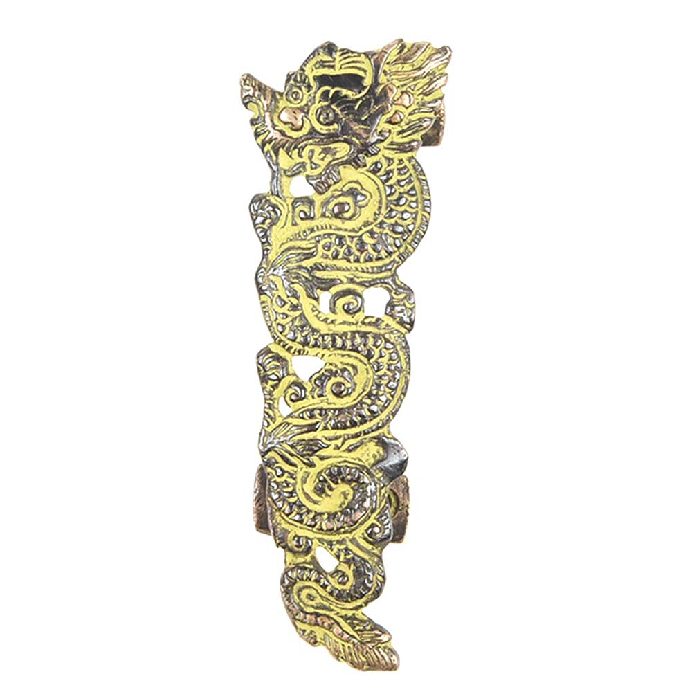 Patina Rich Dragon Brass Door Handle