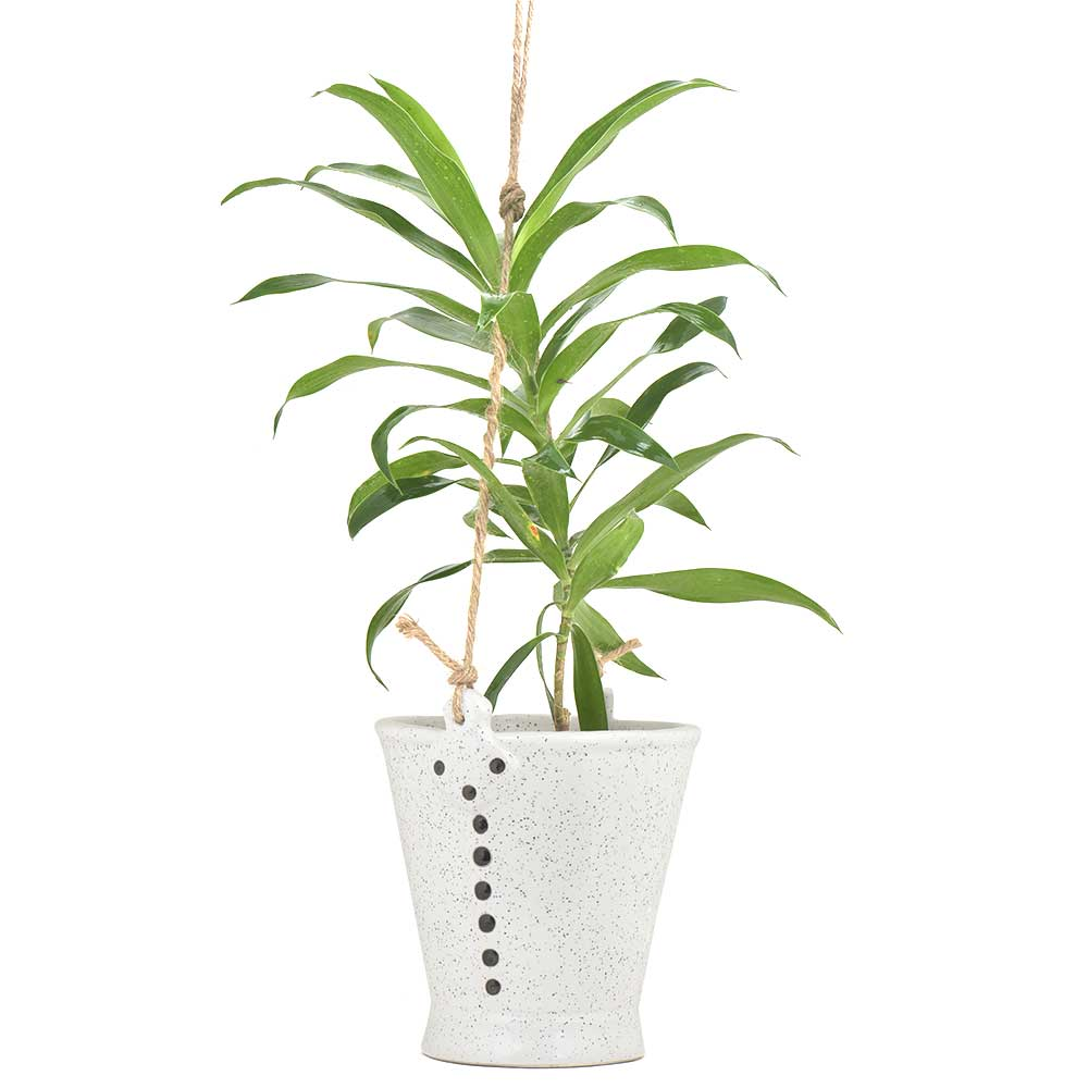 Offwhite Ceramic Bucket Planter