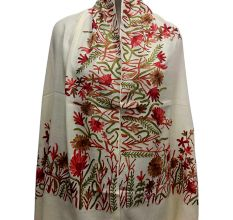 Off White Semi Pashmina With Embroidered Border Stole
