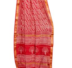 Red Chanderi Saree With White Parsley Motifs and Designer Pallu With Blouse piece