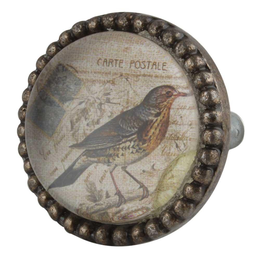 Sparrow Inside Round Iron Glass Dresser Knob