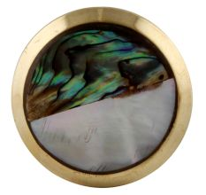 Stephen Brass Shell Cabinet Knob