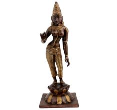 Brass Standing Parvati Statue With Golden Detailing