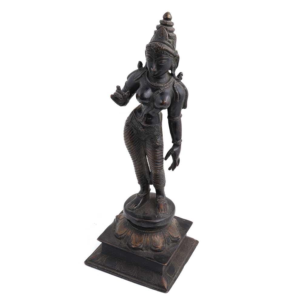 Black Brass Standing Parvati Statue